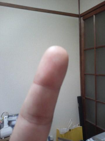 「外国人」の指紋